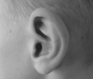 how do we hear outer ear